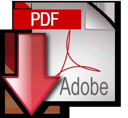 Treetog-Junior-Document-pdf